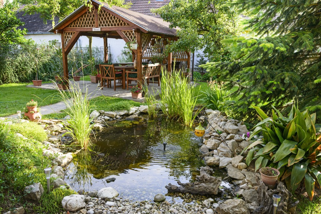 relaxing backyard with mini pond